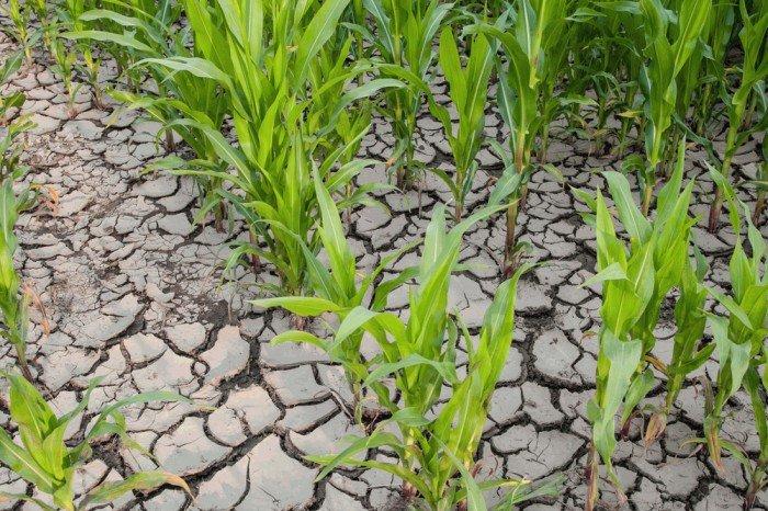 Erosion Definition