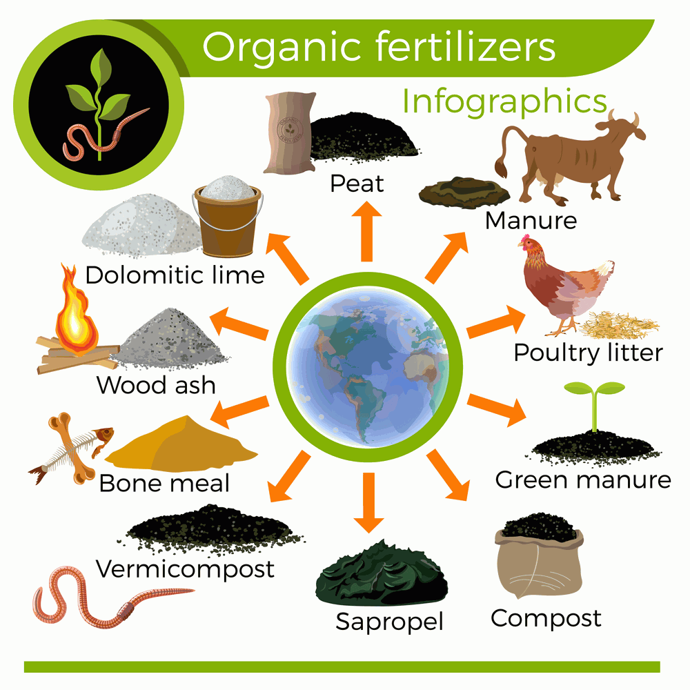Types of compost