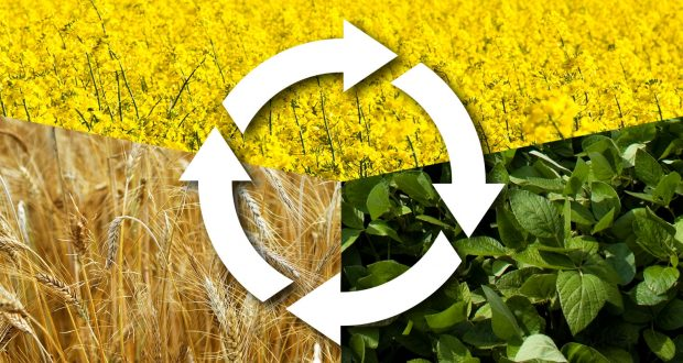 ROTATION OF CROPS