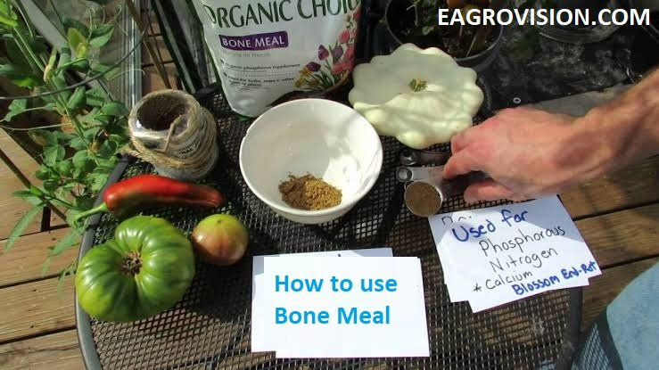 HOW TO USE BONE MEAL