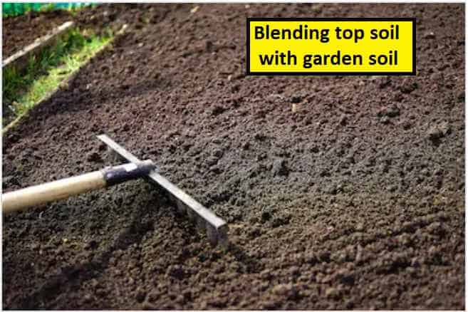 What Is Topsoil Importance And Uses 2020 E Agrovision